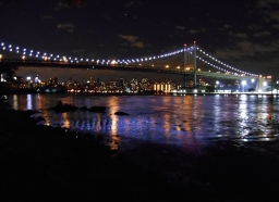The RFK Bridge