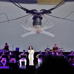 [UPDATED] Björk Comes to Brooklyn